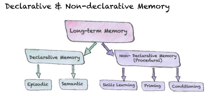 Declarative and non-declarative memory
