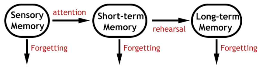 a discussion of the three categories of memory sensory short term and long term memory and how we fo Improve your short-term memory by 1) boosting your brain health with the right diet, supplements, and lifestyle, and 2) using memory techniques to the diagram below summarizes the three stages of memory sensory memory is fleeting, lasting less than half a second it allows you to almost.